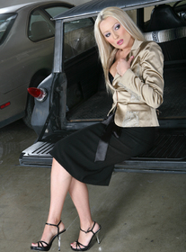 Diana Doll:Co-worker, Car, Garage, Public Place, Big Fake Tits, Blonde, Foreign Accent, Petite